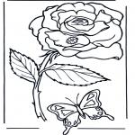 Różne - Róża