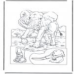 Zwierzęta - Słoń 1