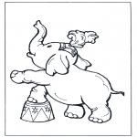 Zwierzęta - Słoń w cyrku