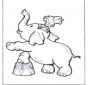 Słoń w cyrku