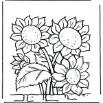 Różne - Słoneczniki