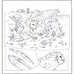 Zwierzęta - Sowa na polowaniu