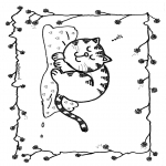 Zwierzęta - Śpiący  kot