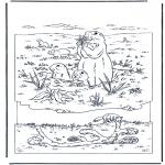 Zwierzęta - Świszcz