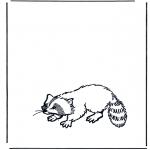 Zwierzęta - Szop
