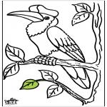 Zwierzęta - Tukany