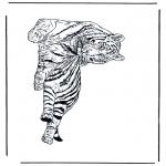 Zwierzęta - Tygrys