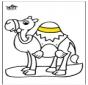 Wielbłąd 2