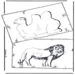Zwierzęta - Wielbłąd i lew