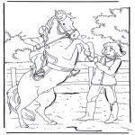 Zwierzęta - Wierzgający koń