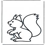 Zwierzęta - Wiewiórka 1