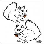 Zwierzęta - Wiewiórka 4