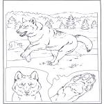 Zwierzęta - Wilk w śniegu