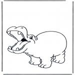 Zwierzęta - Zadowolony hipopotam