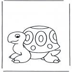 Zwierzęta - Żółw
