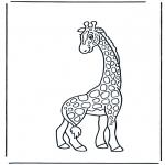 Zwierzęta - Żyrafa 2